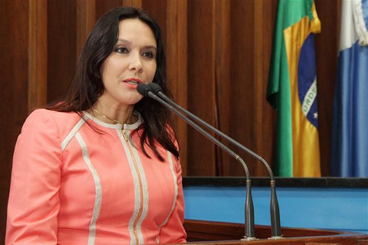 Coordenadora do Fórum Estadual de Combate à Violência Doméstica e Familiar contra a Mulher da OAB/MS ressalta necessidade do serviço ininterrupto (Foto: Wagner Guimarães/ALMS)
